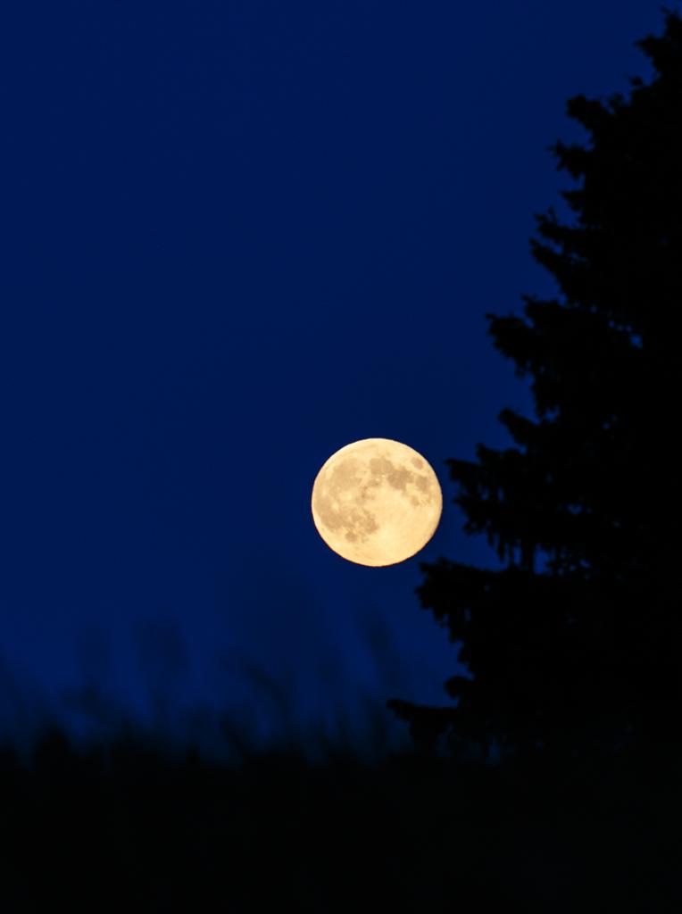 sun-moon-torup_0049