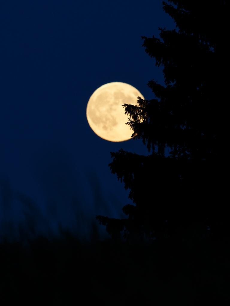 sun-moon-torup_0051