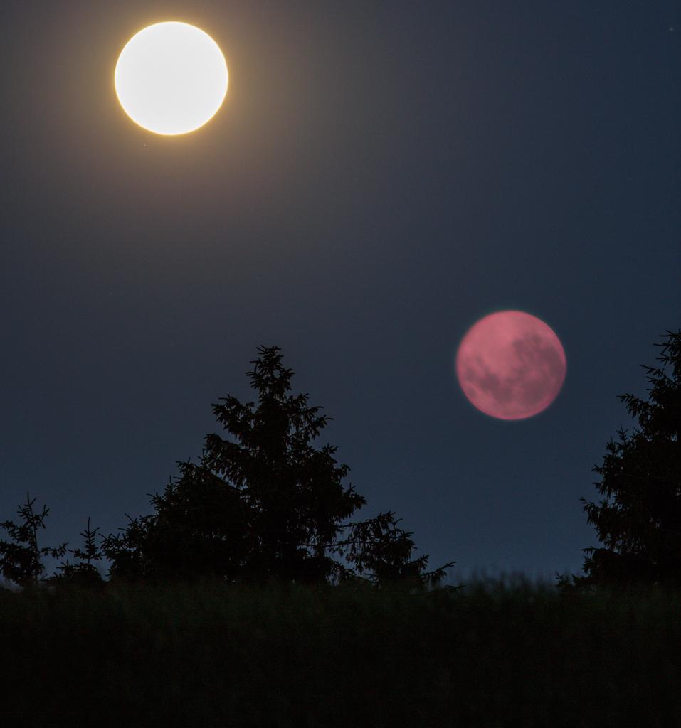 sun-moon-torup_0080